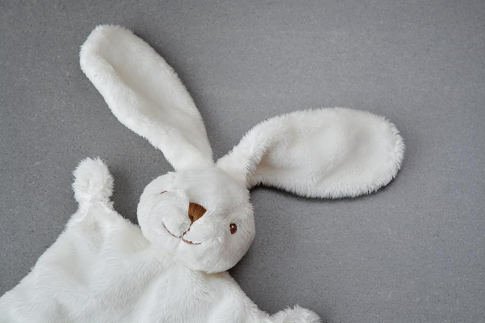 hare-1244405_960_720